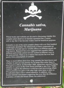Marijuana sign